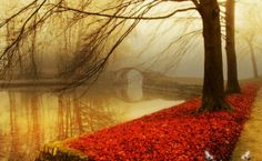 Autumn 1080P HD Wallpaper