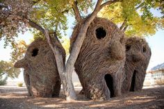 "Land Art Architecture Crafts, artwork April 30, 2014 -- Patrick Dougherty Oklahoma formed impressive sculptures and huge artworks from young branches. He weaves and bundles with ""jungholz"" so sweeping shapes and forms arise. Over the past 30 years, Dougherty won numerous awards and created more than 250 works. See more here http://purnatur.com/blog/land-art-architecture/"