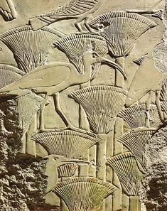 Old Kingdom, 5th Dynasty. Relief from the Memorial Temple of Userkaf at Abusir, depicting birds among the papyri. Detail. Getty Images.