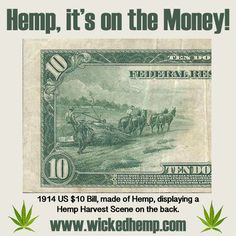 Hemp, it's Right on the Money! The 1914 US 10 dollar bill was not only made of Hemp but it displayed and Hemp Harvest scene on the back! Part of Our Past, Vital to Our Future! Cannabis, Marijuana Facts, Medical Marijuana, Ganja, Earth Day History, Smoking Weed, Fun Facts, Random Facts, Weird Facts