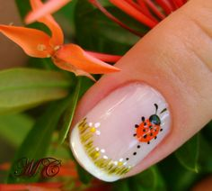 Cute lady bug nail art