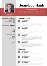 Image Result For Cv Comptable Creative Cv Template Cv Writing Service Resume Design Free