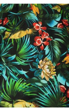 Laura Byrnes California - Alfreda Dress in Hawaiian Parrot Print - Plus Size | Pinup Girl Clothing