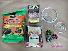 Easy steps to make a terrarium garden. This shows a cactus and herb mini terrarium in glass jars. Cool!