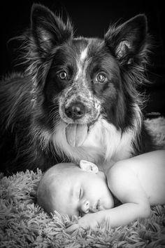 ...dog and his baby...