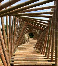 Bamboo tunnel in Kyoto, Japan. Bamboo House, Bamboo Garden, Bamboo Tree, Bamboo Bamboo, Bamboo Roof, Lucky Bamboo, Bamboo Construction, Impressive Image, Bamboo Architecture