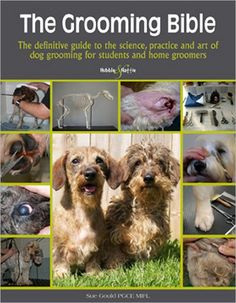 Clipping matted dog this is one of the best videos ive seen on the grooming bible the definitive guide to the science practice and art of dog solutioingenieria Image collections