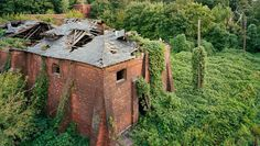 NYC's Last Great Secret: This Abandoned Island
