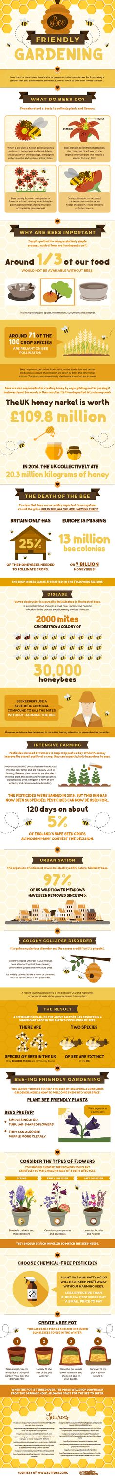 Bee Friendly Gardening #infographic #Bee #Gardening
