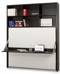 intelligent storage just doesn't get any smarter than this! desk/bed with storage on top!