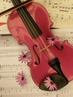 Violin pink flowers