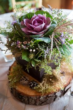 Kale centerpiece on a log by #floraldesign #rusticcenterpieces #purpleandbrown www.floraldesign.me
