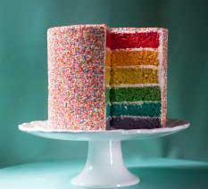 This Rainbow Sprinkle Cake is a vibrant, colourful delight which will bring smiles to any birthday party! Salmon Mousse Recipes, Smoked Salmon Mousse, Rainbow Sprinkle Cakes, Rainbow Sprinkles, Braai Salads, Malva Pudding, Frangipane Tart, Smooth Cake, Cake Mixture
