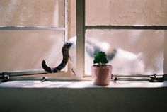 ++ photography : mori