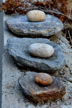 Stone (wild) spices grinders. Allow us to make powder with leaves and more fibrous materials. Can't do that with modern appliance, even a coffee grinder won't work.