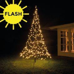 Led Lampjes Gekleurd Op Batterij 40 Stuks Draadverlichting Met 40