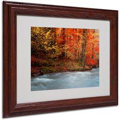 "Trademark Fine Art ""Sometimes"" Canvas Art by Philippe Sainte-Laudy, Wood Frame"