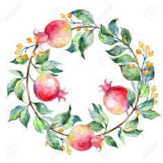 Illustration of Vector round frame of watercolor pomegranate and berries. Watercolor illustration wreath of pomegranate and leaves. Can be used as a greeting card for background birthday day and so on. vector art, clipart and stock vectors. Plains Background, Background S, Pomegranate Art, Pomegranate Tattoo, Pomegranate Drawing, Watercolor Flowers, Watercolor Art, Arte Judaica, Painting Art