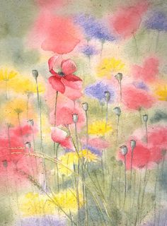 Summer Meadow by louise-art Watercolor Poppies, Watercolor And Ink, Watercolor Paintings, Watercolors, Small Paintings, Beautiful Paintings, Watercolor Pictures, Painting & Drawing, Collages