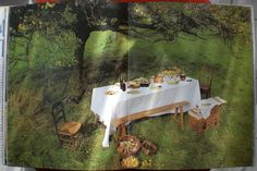 picknick with Monet