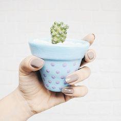 Mão com potinho de poá e mini cactus @biajiacomine