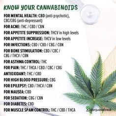Weed Facts, Marijuana Recipes, Cannabis Edibles, Marijuana Butter, Weed Recipes, Cannabis Shop, Cannabis Plant, Health And Fitness, Medical Marijuana