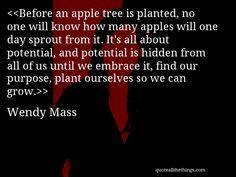 Wendy Mass quote