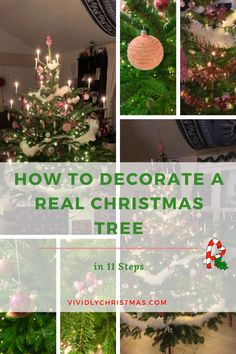 An easy step-by-step guide on HOW TO DECORATE A REAL CHRISTMAS TREE from top to bottom! Let's create a festive mood and start decorating! - Vividly Christmas #realchristmastree #livechristmastree #christmastree #treedecor Live Christmas Trees, All Things Christmas, Christmas Diy, Light Decorations, Christmas Decorations, Holiday Decor, Advent Wreath, Let's Create, Tree Crafts