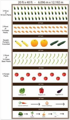 Vegetable Garden Plan click and then follow to make your own square foot layout. Mine so far is a huge success and has made planning our summer garden super easy.