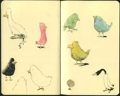 The Beauty of Birds by MattiasA