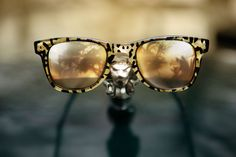 Carrera By Jimmy Choo golden leopard sunglasses