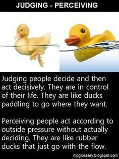 Judging vs perceiving - duck and rubber duck, MBTI - INFJ Personality Profile, Myers Briggs Personality Types, Myers Briggs Personalities, Personality Tests, Mbti, Enfj, Judging Vs Perceiving, Intj And Infj, The Villain