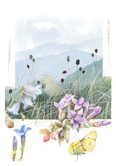 Autumn in The Mountains               Autumn, fall, mountains, butterfly, flowers