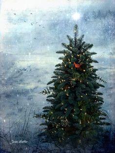 The Tree - Jean Hutter - Digital Views