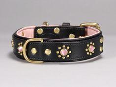suki custom leather dog collar