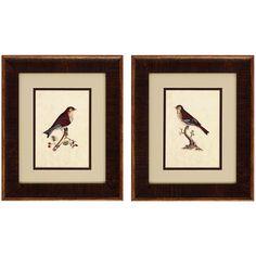 Selby Birds 2 Piece Framed Graphic Art Set