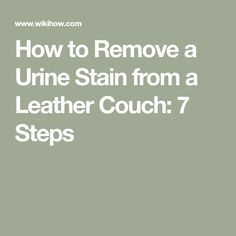 How To Remove A Urine Stain From A Leather Couch 7 Steps Urine Stains Leather Couch Urinal