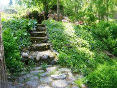Garden Paths, Garden Bridge, Stepping Stones, Woodland, Outdoor Structures, Outdoor Decor, Cabana, Outdoors, Gardening