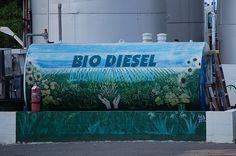 Biodiesel Quality Testing
