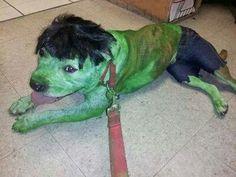 ...wtheck! LOL  **the Hulk!  LOL