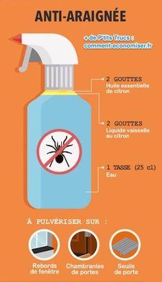 Le répulsif naturel contre les araignées à base d'huile essentielle de citron