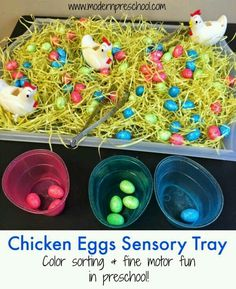 Fine motor and color sorting sensory tray with chicken eggs for toddlers and preschoolers from Modern Preschool, great preschool spring and easter activity Easter activities Chicken Eggs Sorting & Fine Motor Sensory Tray Farm Activities, Spring Activities, Infant Activities, Holiday Activities, Fine Motor Preschool Activities, Kindergarten Sensory, Preschool Centers, Preschool Classroom, Toddlers And Preschoolers