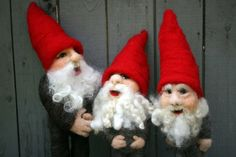 The Gnomes