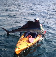 Choosing a fishing kayak for beginners may not seem as simple as it sounds. Read our list of five kayaks for beginners, and make an intelligent step to find the best fishing kayak. Best Fishing Kayak, Bass Fishing Tips, Fishing Boats, Kayak For Beginners, Bait Caster, Fishing Supplies, Types Of Fish, Largemouth Bass, Pontoon Boat