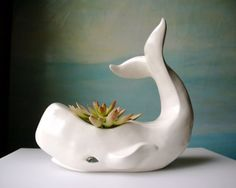 whale planter. hmm. animal planters are an emerging trend for me.
