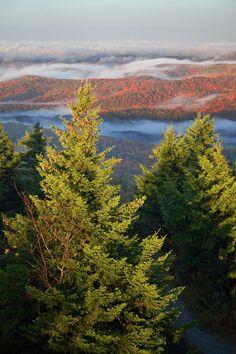 Spruce Knob Sunrise - Spruce Knob, WV (state high point)