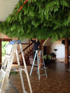 Adding sections of lattice woven with cedar boughs.