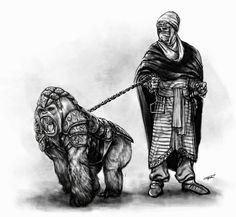 Simio de guerra