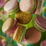 Pierre Herme Macarons (pistachio recipe in link)