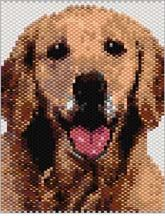 Golden Retriever Beading Pattern by Sigrid Wynne-Evans at Bead-Patterns.com